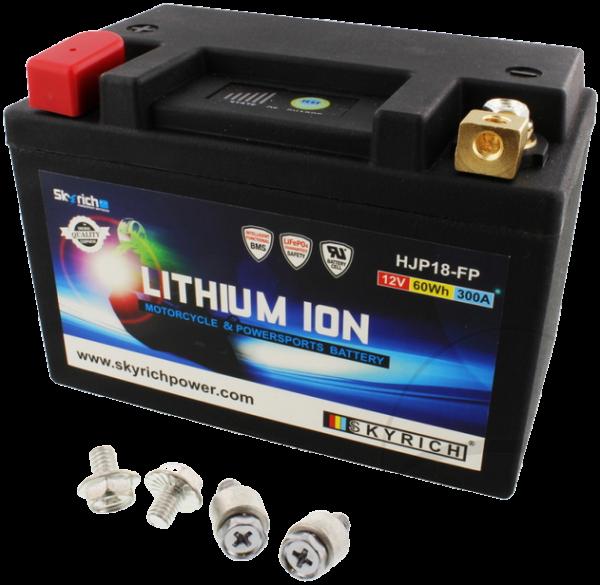 Lithium-Ionen Batterie, Skyrich mit Überspannungsschutz, XB9/12 alle Modelle